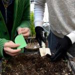 PVC、PER、TPE、天然ゴム、ハーブヨガマットの5種類のヨガマットは土壌分解されるのか?実験アート